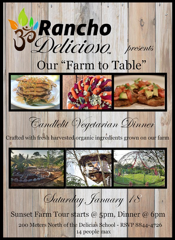Farm to Table Vegetarian Dinner Flier