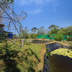 Tilapia Pond and dome