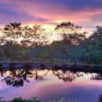 Sunset over the tilapia pond