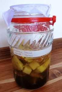 Vinegar started - Pineapple scraps, Tapa Dulce, and water