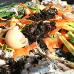 Kitchen scraps and waste