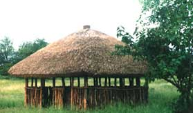 Vetiver roof hut