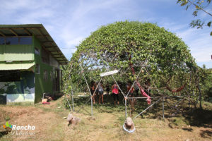 Passion Geodesic Dome
